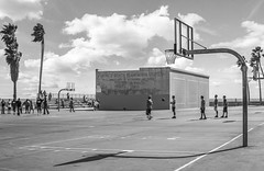 Venice Beach Recreation (CMWFoto) Tags: venice beach california basketball park ocean people play sports clouds palm trees life urban living nature travel vacation explore