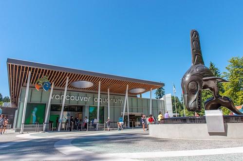 Thumbnail from Vancouver Aquarium