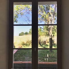 The view from the kitchen to the field (Dradny) Tags: emptyfield plumtrees summer16 france breakfast writing working