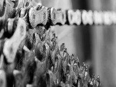 Macro Mondays - Summer Olympic MTB. (terry@sevensixty images) Tags: macromondays summerolympicsports macro canoneos760d cycling mountainbike cogs chain mtb