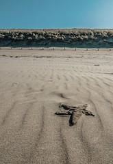 Sea star langervelderslag Noordwijk (B. Versteeg) Tags: blue sea sky holland beach star sand nikon zee noordwijk ster d300 langervelderslag
