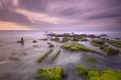 Bubbles (FX-1988) Tags: sunset sea bw seaweed water clouds israel weed long exposure cloudy sigma ישראל movment alga 10mm palmahim פלמחים palmachim אצות nd1000 שקיע d7100