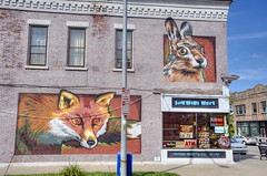 South Avenue in the South Wedge - A and Z South Marrket 02  Fox and The Hare (George - with over 2 mil views - THANKS) Tags: urban music usa newyork us unitedstatesofamerica rochester upstatenewyork newyorkstate hdr urbanscenes buildingart westernnewyork wallpaintings wallmural monroecounty photomatixpro nikond700 photogeorge walltherapy acdseeultimate8 foxandthehare artistmrprvrtakajustinsuarez