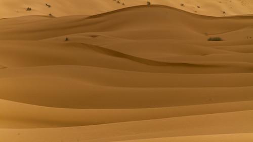 Weite der Sahara