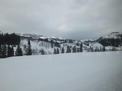 15j5660 (kimagurenote) Tags: snow   sumon   tadamiline   uonumaniigata