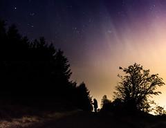 Janet n the Aurora 17-3-15 (amcgdesigns) Tags: trees dark scotland lowlight unitedkingdom scottish aurora slowshutter drama northernlights forres canon1022mm rafford andrewmcgavin andrewmcgavin