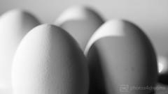 just eggs (photos4dreams) Tags: easter photo foto photos pics egg ostern ei oster eier osterei photos4dreams photos4dreamz p4d eggs2015p4d