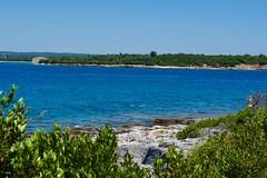 DSC_0269 (seustace2003) Tags: pula pola hrvatska croatia kroati croazia istra istria brijuni sea mare more jadranska mora muir