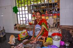 Fish Market Pondicherry (wandercrumbs) Tags: fish market cat lunch rock beach pondicherry puducherry