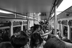 ExpoLine (kengikat40) Tags: expoline metrolosangeles train downtownsantamonica santamonica streetphotography rawlastreet santamonicabeach