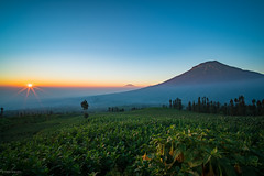 Sunrise @ Posong (petersaputra) Tags: mountain mt mount gunung sumbing posong