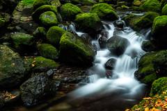 Green (John A Hunt Photography) Tags: waterfall sony au australia nsw newsouthwales ebor comara visitnsw