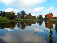 DSCN23484 (dkmcr) Tags: ripleycastle ripon yorkshire castle landscape scenery daytrip tourism outdoor heritage weddingvenue 27th september 2015 ripley lake reflection