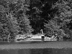 Summer Exploration (Boneil Photography) Tags: boneilphotography brendanoneil m43 microfourthirds panasonic dmcg10 m42 screwmount takumar 200mmf35 preset haverhill ma