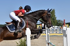 DSC_1242 (2) (ploufjf_64) Tags: paus show jumping chevaux pau 2016
