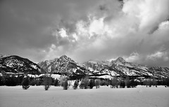 Mountains of the Teton Range (Black & White, Grand Teton National Park) (thor_mark ) Tags: blackwhite capturenx2edited cloudsabove cloudsswirlingaround cloudsaroundmountains colorefexpro day3 disappointmentpeak evergreentree evergreens grandtetonnationalpark greateryellowstonerockies hiddeninclouds lookingnw lowclouds mountains mountainsindistance mountainsoffindistance nature nezpercepeak nikond800e project365 snowylandscape taggartlaketrailhead teewinotmountain tetonrange tetonrangeyellowstonearea trees wyomingcountryside moose wyoming unitedstates