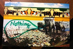 Nothing... (GinaVisione) Tags: cats animals mailart snailmail decotape washitape ginavisione