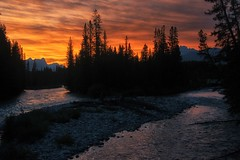 Fire in the Sky (dbushue) Tags: trees sunset canada mountains nature silhouette river landscape evening nikon alberta lakelouise bowriver fireinthesky soothing banffnationalpark canadianrockies 2014 dailynaturetnc14 dailynaturetnc15