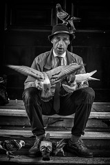 Street portrait of Paul the birdman (Daz Smith) Tags: second best dazsmith canon6d bw blackwhite blackandwhite bath city streetphotography people candid canon portrait citylife thecity urban streets uk monochrome blancoynegro paul man sat sitting birds feathers wings flight pigeon tie hat birdman