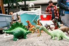 Pinery Dino Party (Georgie_grrl) Tags: camping friends party ontario toys photography social gathering pentaxk1000 herd dinosaurs lakehuron outing thepineryprovincialpark rikenon12828mm 4thannualtopwcampingtrip pineryantiquesmarket jurassicpinery