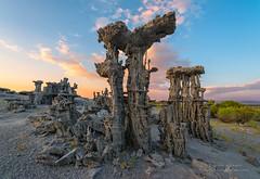 Alien Towers - Mono Lake (Darvin Atkeson) Tags: mono lake sand tufa tufas alien tubes rock formation eastern sierra sunset intricate glow