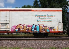 Chub (quiet-silence) Tags: graffiti graff freight fr8 train railroad railcar art chub d30 dirty30 dtt wge cryx cryo cryotrans reefer cryx5741