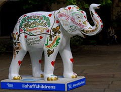 Herd of Sheffield elephant sculptures (9) (Simon Dell Photography) Tags: herdofsheffield herdof sheffield herd eliphants statues town city sculptures colorfull awsome 2016 trail see find them locations