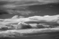 (Maddilly M.G.) Tags: soleil sunlight sky ciel nuages clouds cloud cloudy nuageux nuage gris nuances shades motion contemplation belgium belgique blackandwhite noiretblanc noir blanc