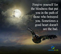 Forgive Yourself (learninginlife) Tags: bad betrayed blindness forgive heart