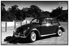 Skate Park (juliewilliams11) Tags: blackandwhite monochrome vehicle photoborder outdoor car skatepark newsouthwales australia volkswagen vw beetle dub canon