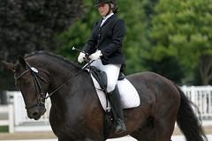 Lamplight Freestyle (Tackshots) Tags: dressage wayne equestrian illinois horse riding