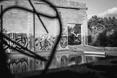 (Austin Kirkpatrick) Tags: skateboarding ohio graffiti urban decay abandoned reflection still water