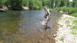 Larry Netting A Nice Rainbow Trout