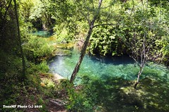 Mi pequeo y refrescante rincn del ro (tonomf) Tags: ro river palancia bejs castelln espaa spain paisaje agua water vegetacin naturaleza nikon nikond5100