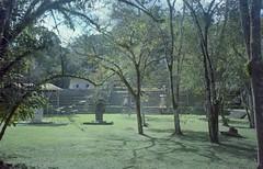 (Camila Scarinci) Tags: bonampak mexico ruins art mayas latinoamerica film canon kodak nature america culture