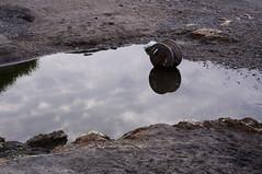 Nobi 160811 #1 (Taro Jimkisbea) Tags: yokosuka nobi reflection beach pentax kr da35mmf24al