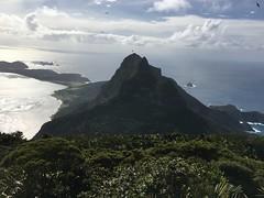 Summit of Mt Gower, Lord Howe Island, Australia (IslandTraveler.com) Tags: lordhoweisland lordhowe mtgowerhike mtgower paulcszigety paulszigety australia worldheritagesite southpacific tasmansea rockclimbing paradise exoticislands