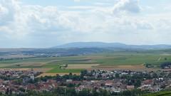 In der Ferne über Gau-Odernheim: Donnersberg