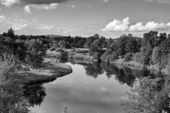 Half a mile to heaven (OR_U) Tags: 2016 oru uk scotland cairngorms highlands river riverspey cockrobin bw blackandwhite blackwhite schwarzweiss monochrome landscape lush sheep serene reflection sky clouds mirror