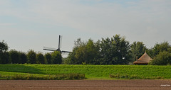 Dutch Landscape Forest (JaapCom) Tags: jaapcom landed landscape mill moulin farmhouse dutch netherlands holland natuur