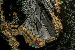 Asprin by Polarized Light Microscopy (Trav_Hale) Tags: art birefringence focus focusstacking helicon heliconfocus heliconremote light microart micrograph microphotograph microscope microscopy nikond5300 patterns plm polarized polarizedlightmicroscopy radicalrxl4t refractiveindex remote science stacking underthemicroscope 4xmagnification brightfield photomicroscopy