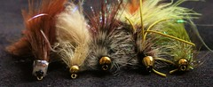 """In A Row"" - Macro Monday (thomaskmoore72) Tags: orvis fly fishing flyfishing outdoors macro canon trout"