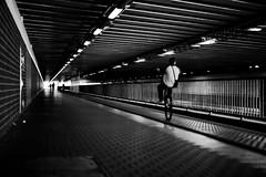 Frankfurt am Main - Biker (Picturepest) Tags: frankfurt frankfurtmain frankfurtammain frankfurtam frankfurtamain francfort hesse hassia hessen deutschland deutsch german germany allemagne germania alemania europe europa schwarzweis schwarzweiss sw blackwhite bw blackandwhite monochrome einfarbig twartwit noir people leute streetscene strasenszene strassenszene streetphotography mensch menschen person persons personen strassenfotografie stadt city urban town stdtisch moment moments candid strasse strase street snap unposed fahrrad bike biker bicycle fahrradfahrer fahrradfahren