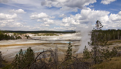 Porcelain Basin 7562 (casch52) Tags: nature national geyser park porcelain yellowstone steam geothermal wyoming basin landscape hot travel heat scenic vacation thermal scenery water spring wilderness trees natural geology tourism lake mist usa landmark stream boiling summer color minerals blue view famous amazing acidic attraction background beauty sky power high great panorama norris geological killed died tourist