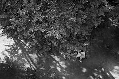 Discovering (Rk Rao) Tags: ladies people blackandwhite india tree texture dark pattern lucknow uttarpradesh shadowandlight humanlife discoving