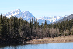 Bow valley provincial park walk around April 2015 (davebloggs007) Tags: park canada river rockies walk alberta valley bow april around provincial 2015