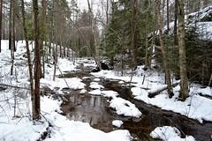 A brook in snowy forest SE of Pond Vakkalampi from the south (Nuuksio national park, Vihti, 20120106) (RainoL) Tags: winter snow forest finland geotagged january v brook fin nuuksio 2012 uusimaa vihti vichtis nuuksionationalpark 201201 20120106 brooksofnuuksio vakkalampi geo:lat=6031448700 geo:lon=2447405900