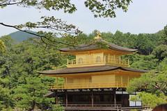金閣寺 (Alison Claire~) Tags: macro tree green nature beautiful japan canon landscape temple eos rebel gold golden scenery kyoto 金閣寺 kinkakuji shining 600d