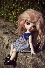 Rose (Choco-chip) Tags: life pink blue portrait black green nature girl rose japan lady hair out french asian outside photography outfit eyes shoes mine dolls dress time korean wig mohair bjd lovely fairyland dollies companies balljointeddolls faceup bkfordolls