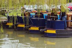 Essentials (Judith White) Tags: holiday water canal cider kennetandavon barge bradfordonavon lager strongbow carling kennetandavoncanal
